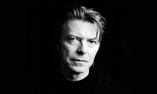 Davidbowie Portrait