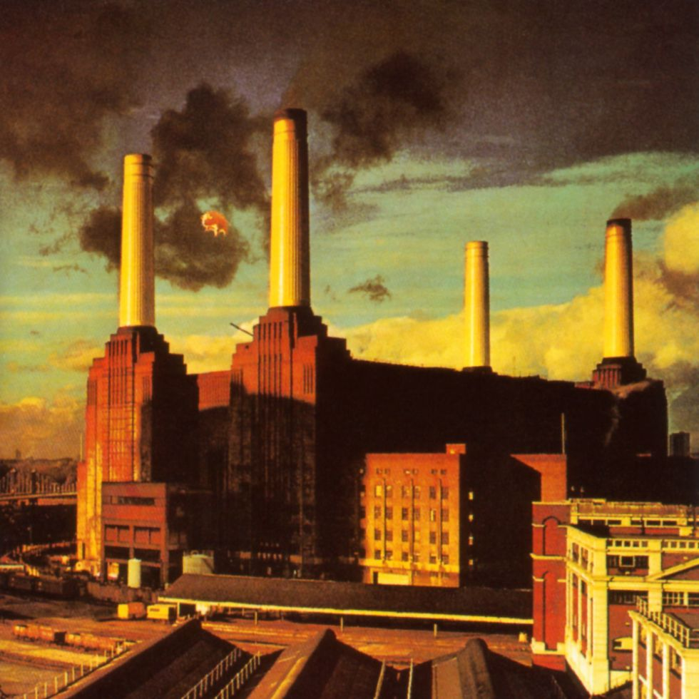 Pink Floyd–animals