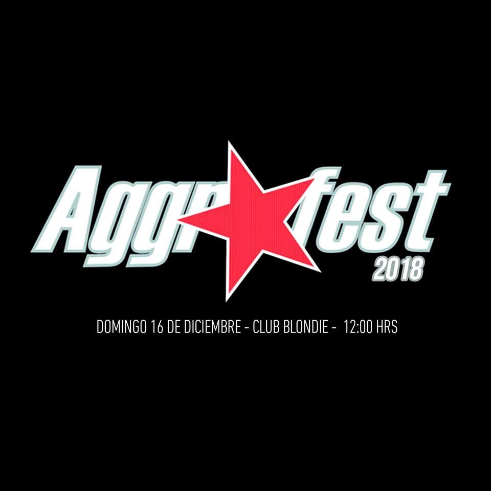 Flyer Aggrofest 2018