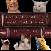 imagen de Galería: Revisa las mejores fotos de gatitos en metallum archives